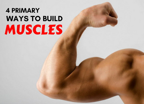 Doctor Reveals The 4 Primary Ways To Build Muscle